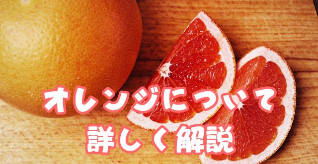 オレンジについて詳しく解説