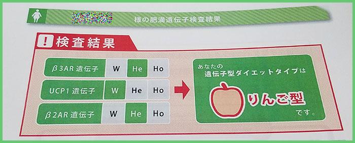 リンゴ型の結果